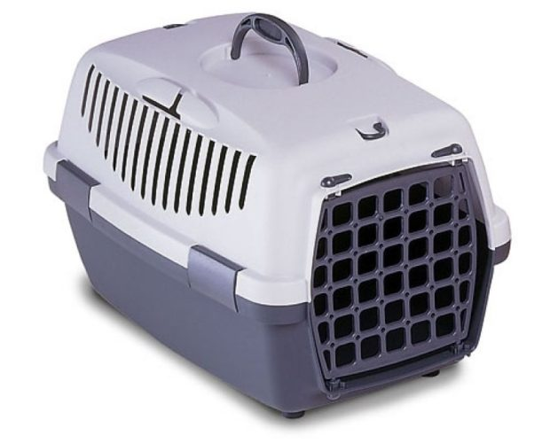 plastic cat carrier