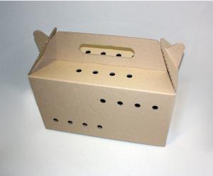 cardboard carriage
